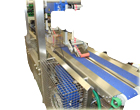 Automated Conveyor